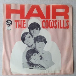 Single The Cowsills Hair